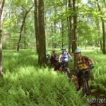 Sacred Rides Michaux
